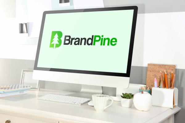 Sample branding #3 for Brandpine