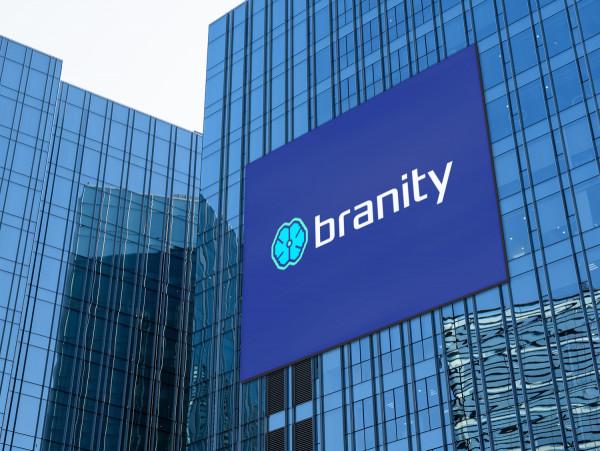 Sample branding #2 for Branity