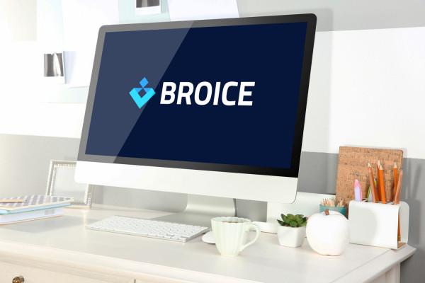 Sample branding #3 for Broice
