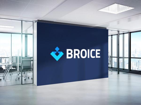 Sample branding #1 for Broice