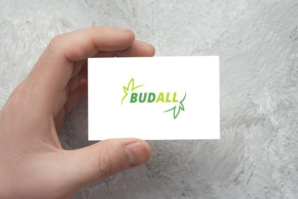 Sample branding #2 for Budall