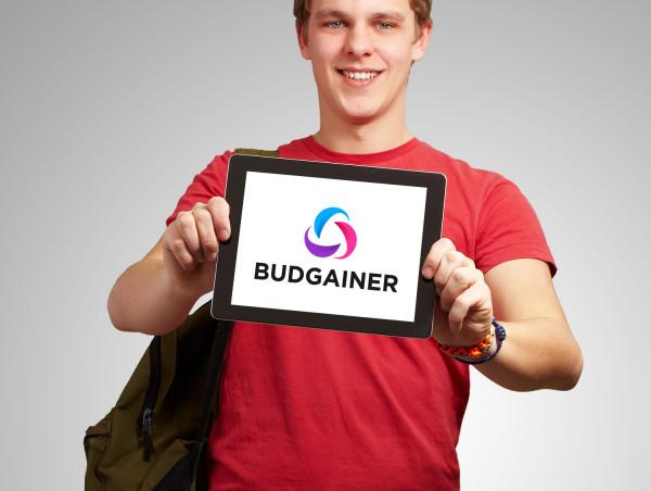 Sample branding #2 for Budgainer