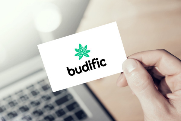 Sample branding #1 for Budific