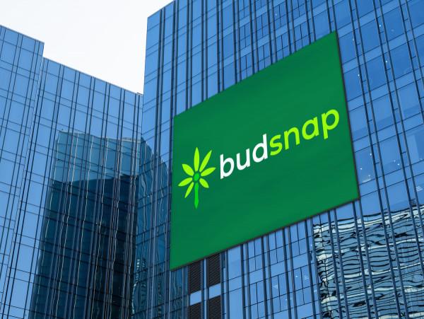 Sample branding #2 for Budsnap