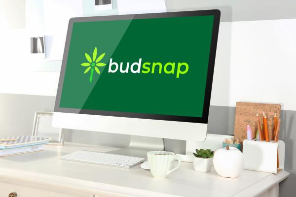 Sample branding #1 for Budsnap