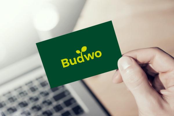 Sample branding #1 for Budwo