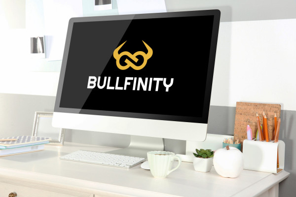 Sample branding #3 for Bullfinity