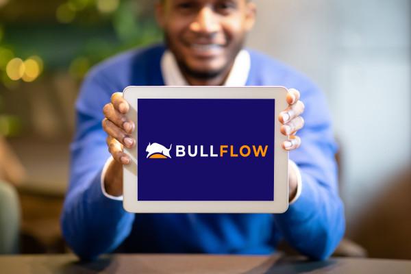 Sample branding #2 for Bullflow