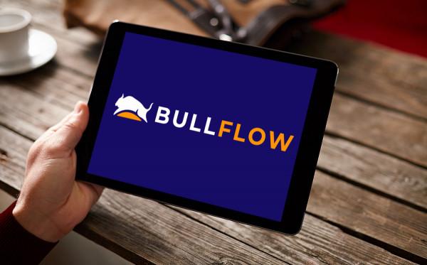 Sample branding #3 for Bullflow