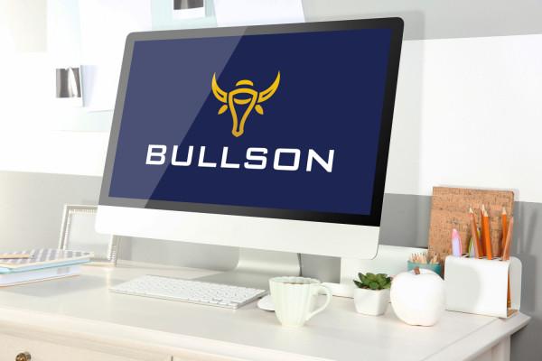 Sample branding #2 for Bullson