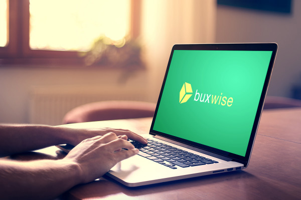 Sample branding #2 for Buxwise