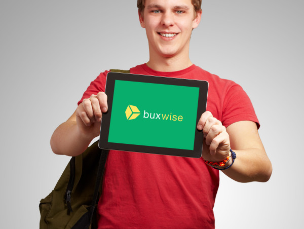 Sample branding #3 for Buxwise