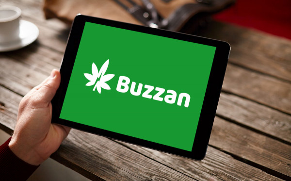 Sample branding #3 for Buzzan
