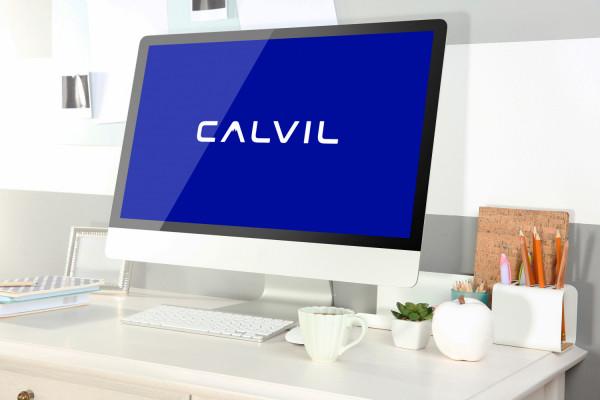 Sample branding #2 for Calvil