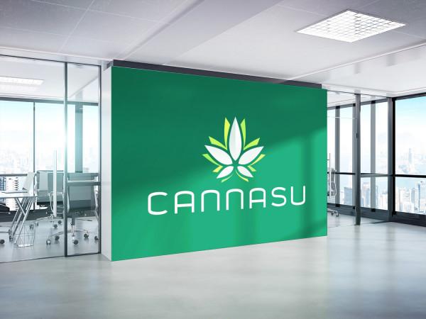 Sample branding #1 for Cannasu