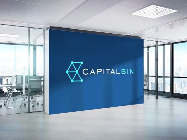 Sample branding #3 for Capitalbin