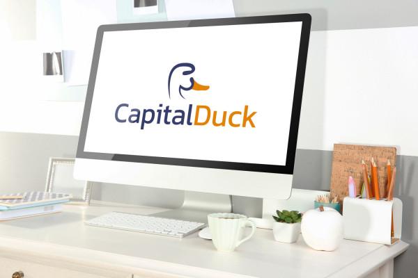 Sample branding #1 for Capitalduck