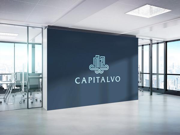 Sample branding #3 for Capitalvo