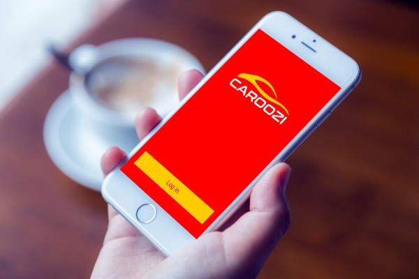 Sample branding #3 for Caroozi