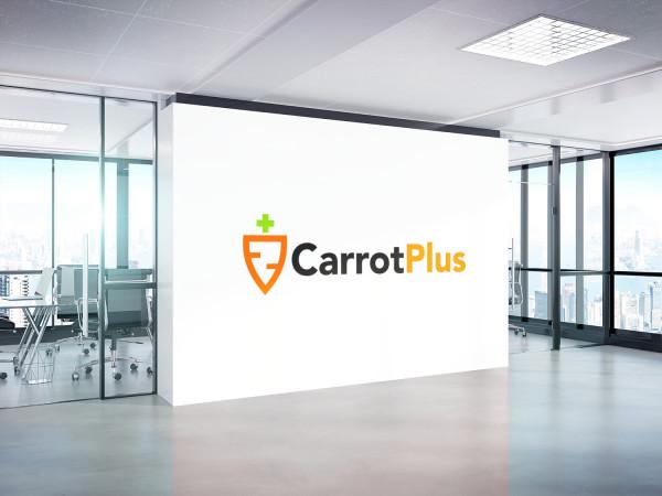 Sample branding #1 for Carrotplus