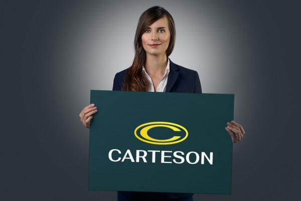 Sample branding #1 for Carteson