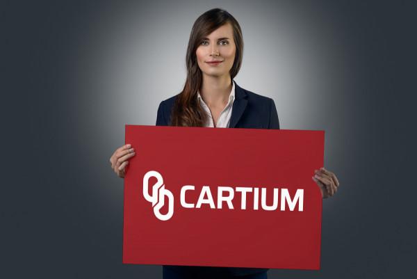 Sample branding #2 for Cartium