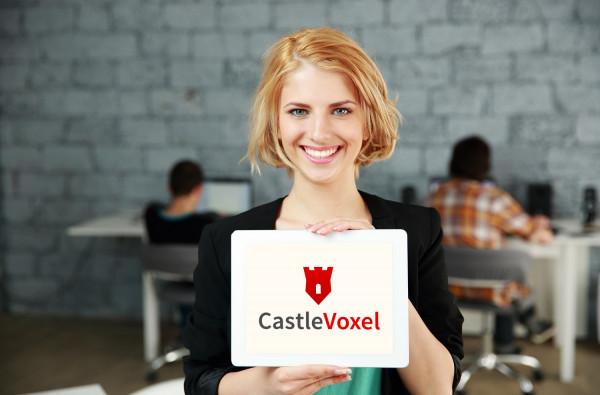 Sample branding #1 for Castlevoxel