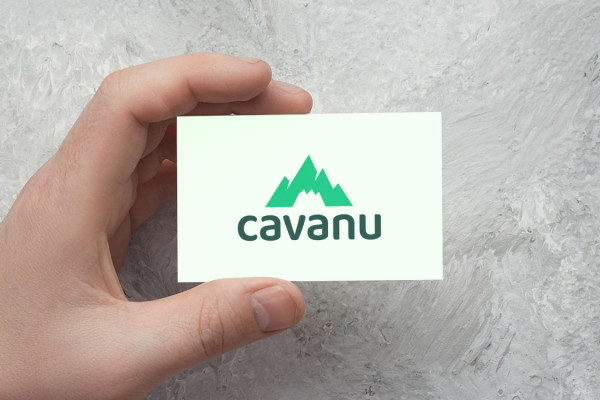 Sample branding #1 for Cavanu