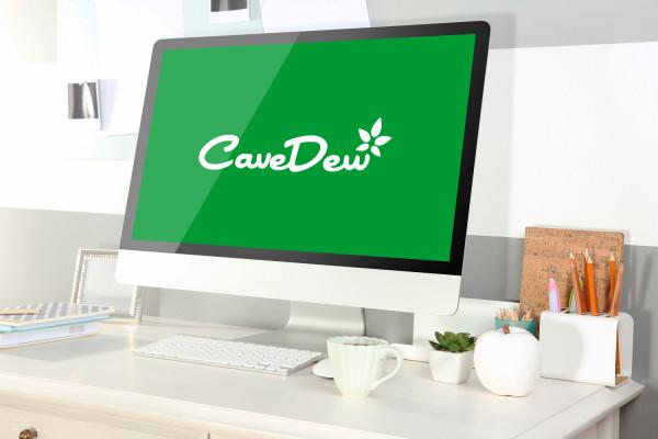Sample branding #2 for Cavedew