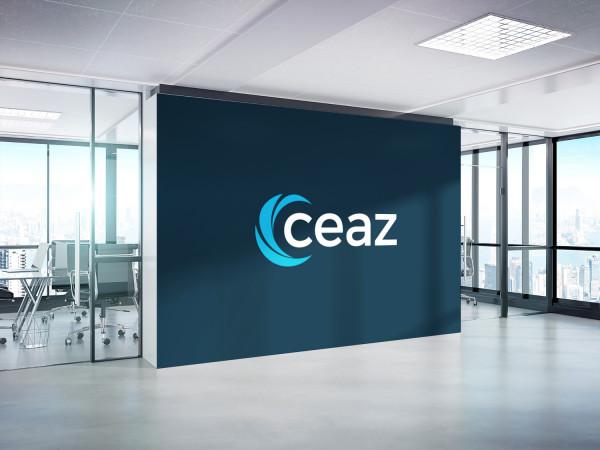 Sample branding #1 for Ceaz