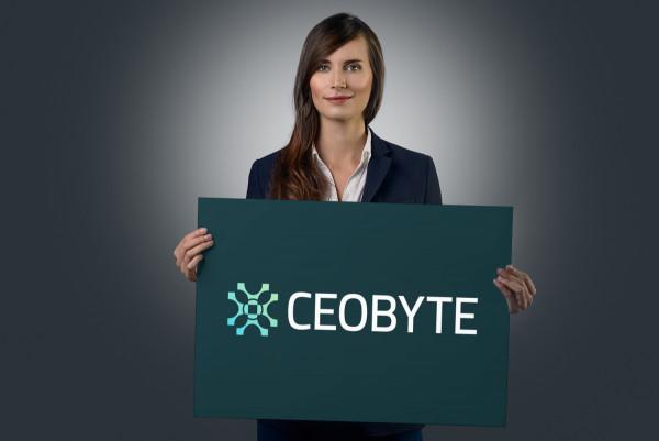Sample branding #1 for Ceobyte