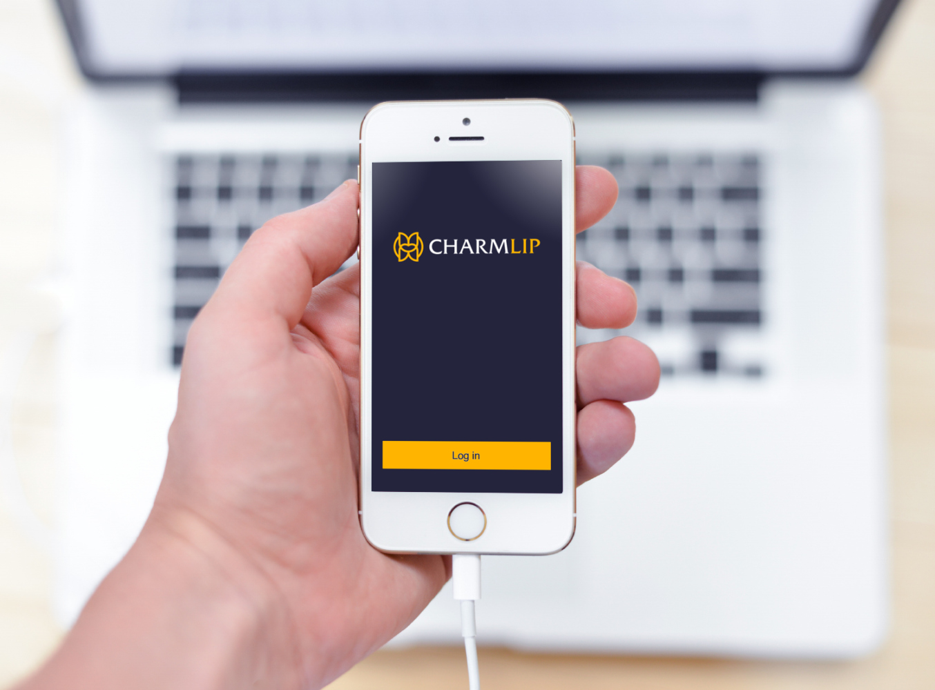 Sample branding #1 for Charmlip