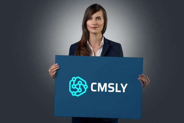 Sample branding #3 for Cmsly