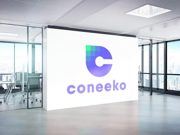Sample branding #2 for Coneeko