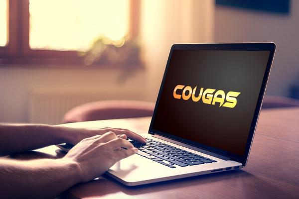 Sample branding #3 for Cougas
