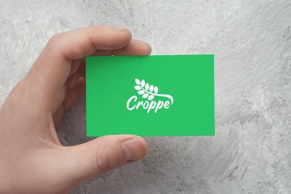 Sample branding #2 for Croppe