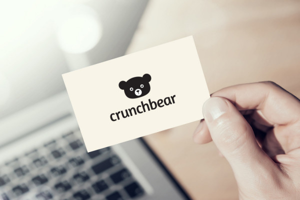 Sample branding #2 for Crunchbear