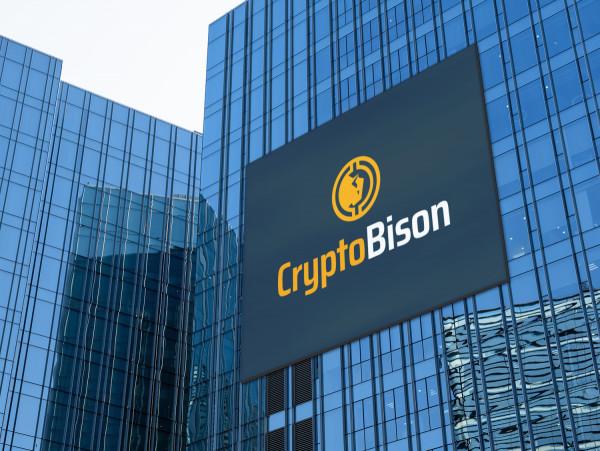 Sample branding #1 for Cryptobison