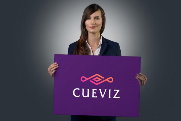 Sample branding #1 for Cueviz
