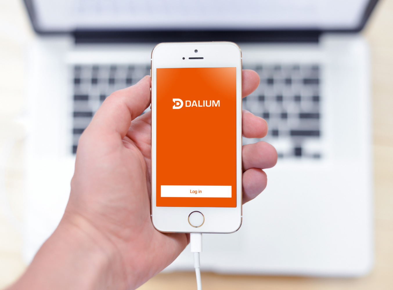 Sample branding #2 for Dalium