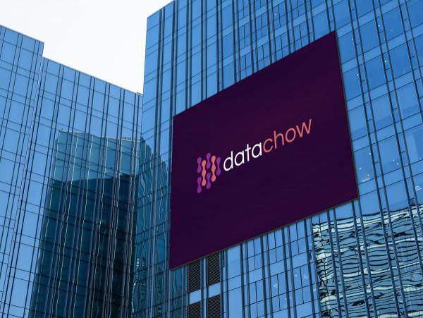 Sample branding #2 for Datachow