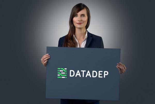 Sample branding #3 for Datadep