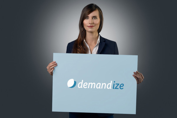 Sample branding #1 for Demandize
