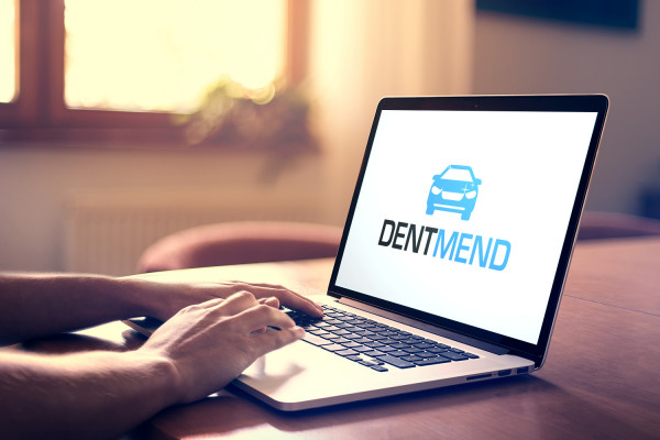 Sample branding #3 for Dentmend