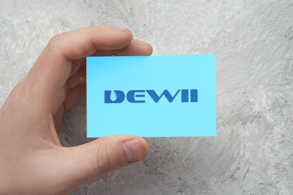Sample branding #2 for Dewii