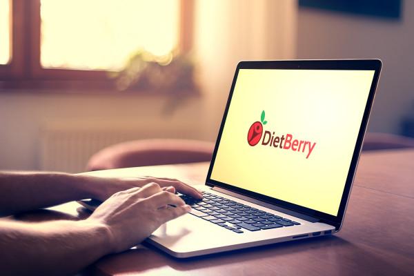Sample branding #2 for Dietberry