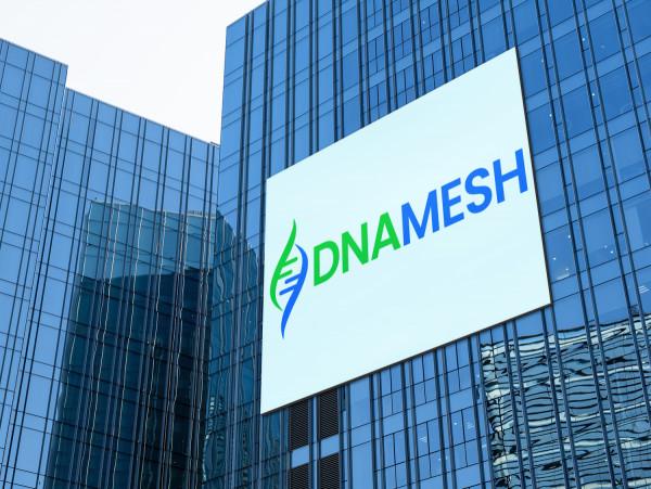 Sample branding #2 for Dnamesh