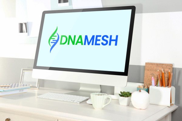Sample branding #3 for Dnamesh