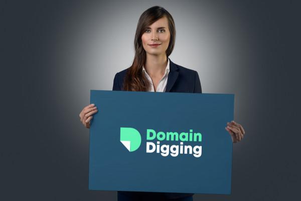 Sample branding #2 for Domaindigging
