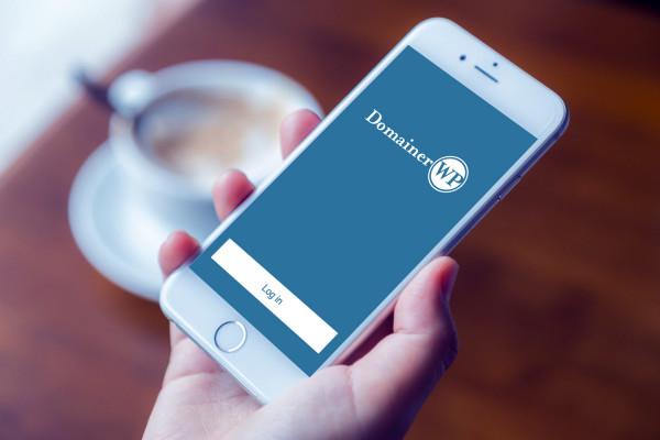 Sample branding #1 for Domainerwp